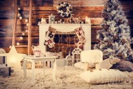 Коледни фотосесии 2016/2017